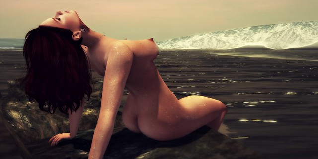 Siren on the coast 2