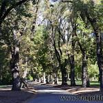 Viajefilos en Australia, Melbourne 047