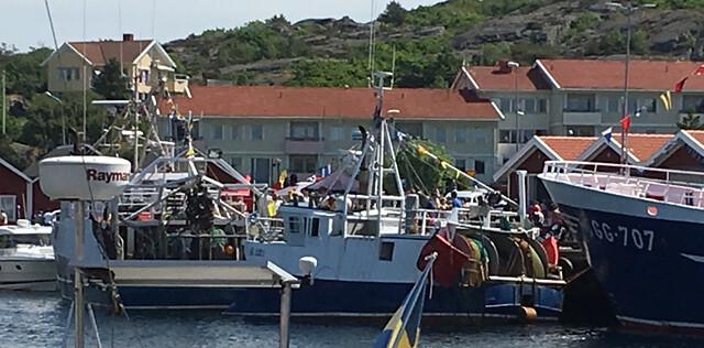 Havets_dag_ronnang - 43