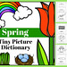 Spring Tiny Picture Dictionary