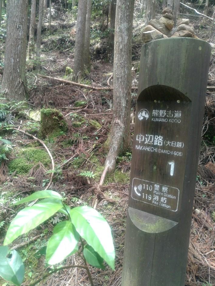 Dainichi-goe Kumano Kodo (Hongu-taisha y Yunomine Onsen, Japón). Espectacular ruta senderista - Vol.6.
