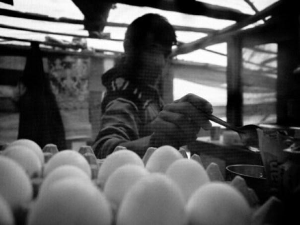 Egg seller