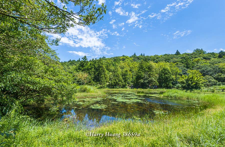 Harry_38659a,陽明山,冷水坑,生態池,水池,湖泊,冷水坑遊憩區,內雙溪源頭,山區湖泊,環湖步道,冷擎步道… | Flickr