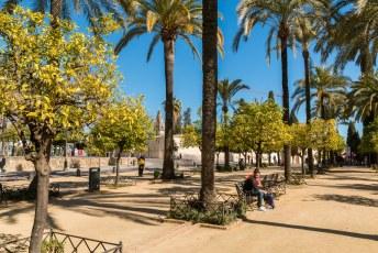 Vanuit het parkje ervoor zie je in de verte de beroemde moskee-kathedraal van Córdoba al.