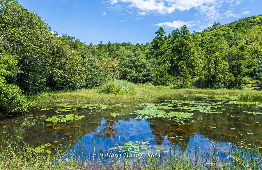 Harry_38661,陽明山,冷水坑,生態池,水池,湖泊,冷水坑遊憩區,內雙溪源頭,山區湖泊,環湖步道,冷擎步道,… | Flickr