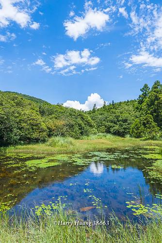 Harry_38663,陽明山,冷水坑,生態池,水池,湖泊,冷水坑遊憩區,內雙溪源頭,山區湖泊,環湖步道,冷擎步道,… | Flickr