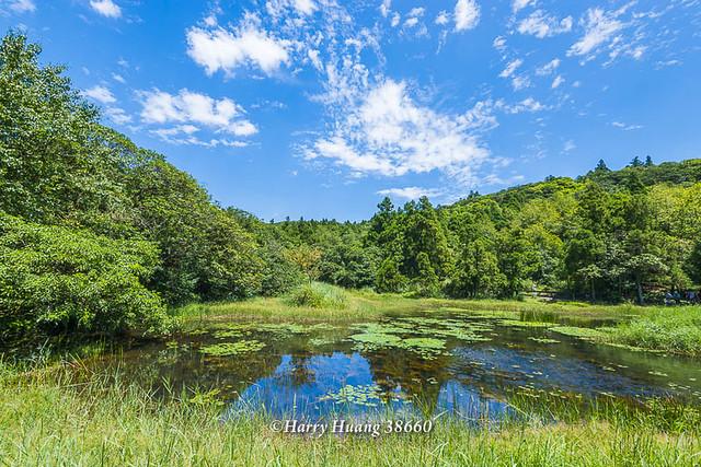 Harry_38660,陽明山,冷水坑,生態池,水池,湖泊,冷水坑遊憩區,內雙溪源頭,山區湖泊,環湖步道,冷擎步道,… | Flickr