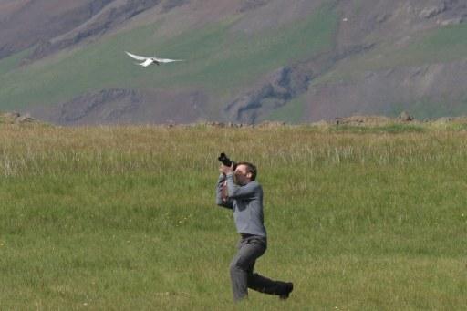 Defensive bird