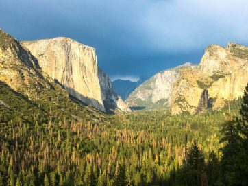 Yosemite new york to los angeles road trip