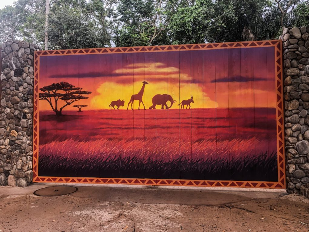 Disney Instagram Walls - The Lion King Wall - Animal Kingdom