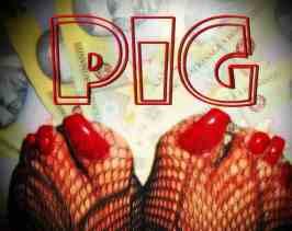 pig money pig cams