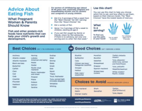 FDA FIsh Chart