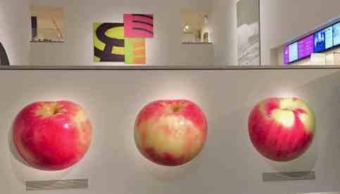 apple art at Portland art museum