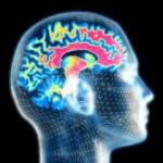 Three Ways to Improve Your Memory