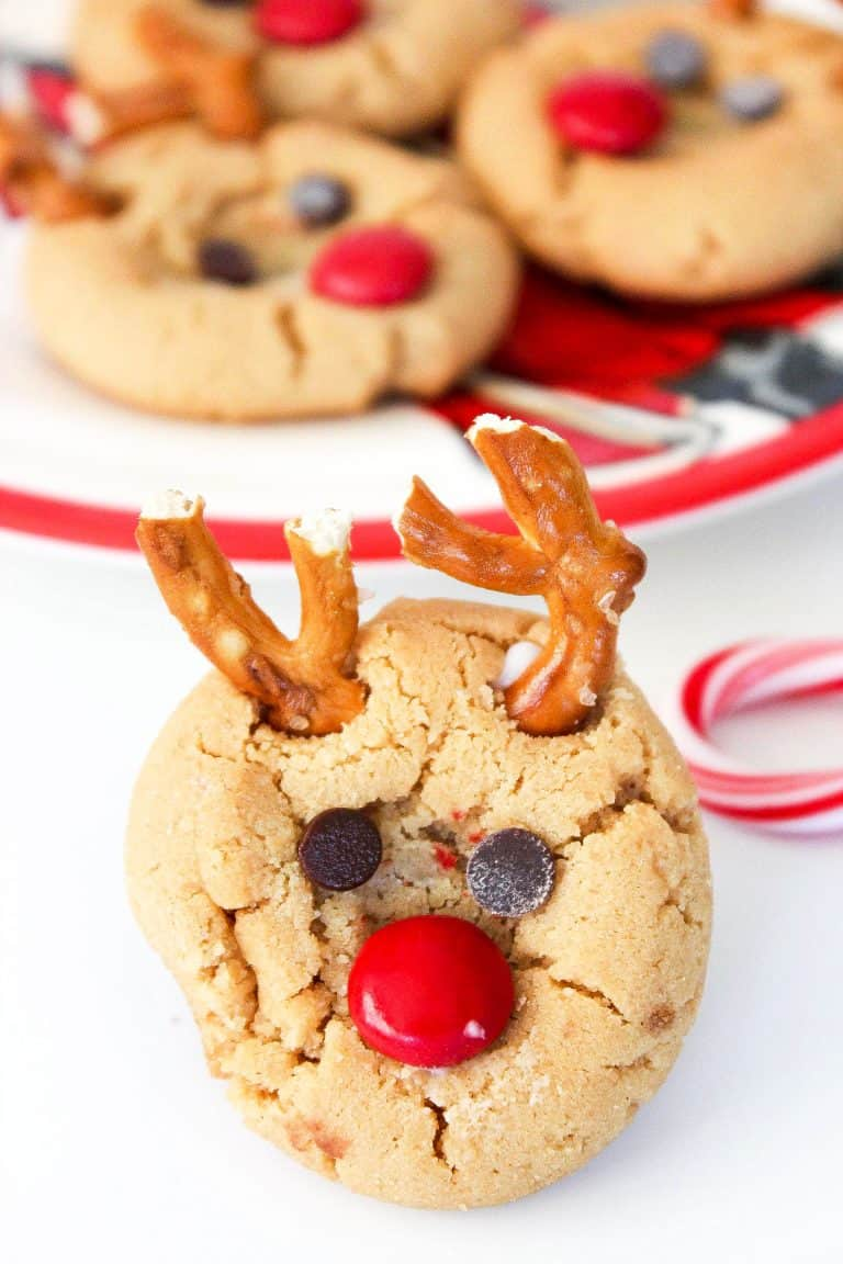 christmas cookie with reindeer theme