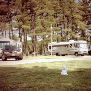 Winton Woods Campground, picture of 2 rvs parked at winton woods campground with a dog in the foreground