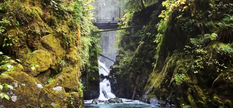 three awesome camping destination in the united states, picture of olympic national park bridge over water