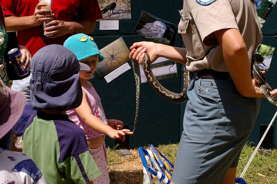 Camp Hosting Duties: Campground Hosts Jobs