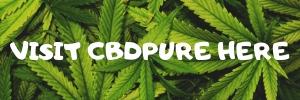 visit cbdpure here