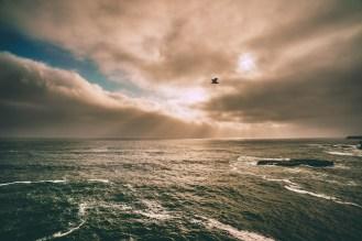 photo-ocean-beautiful-unsplash