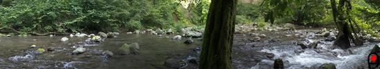 尚仁沢湧水地下流の尚仁沢川の写真