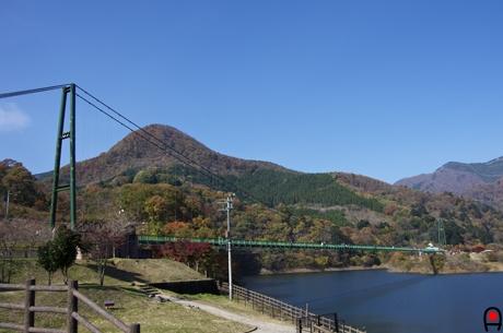 もみじ谷大吊橋の写真