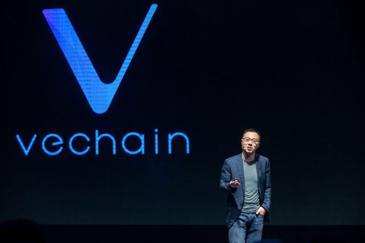 Ve chain