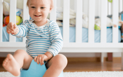 Potty Training: How To Easily Potty Train Your Toddler In 1 Day