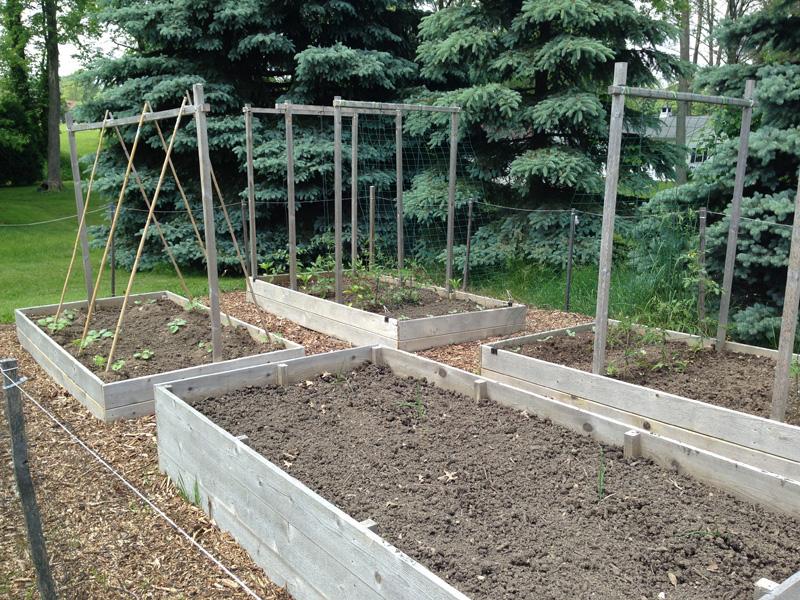 organic garden beds