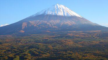 富士山の樹海にある看板