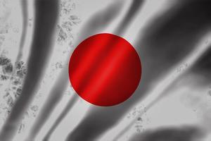 日本の惨状