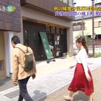 犬塚あさな出演!テレビ大阪「おとな旅あるき旅」10.13まとめ!