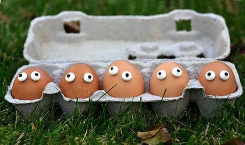 egg-3734168_640