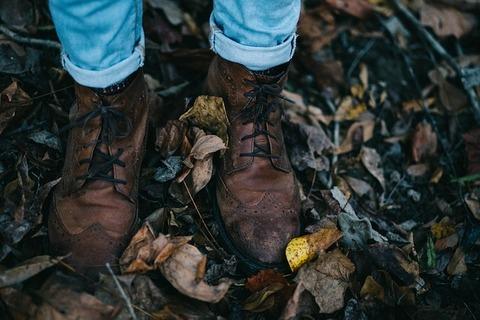 fall-1870012_640