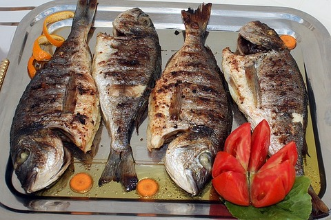 fish-2081768_640