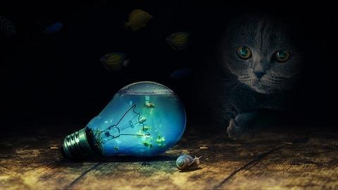 bulb-2352163_640