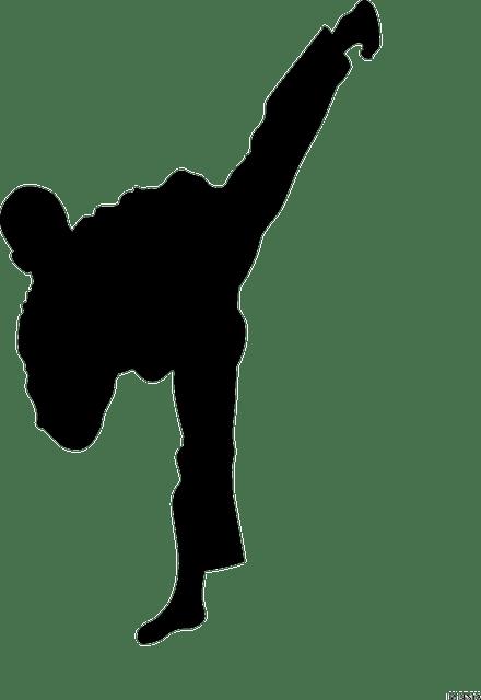 martial-art-311021_640