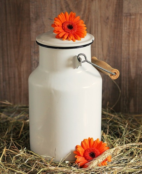 milk-can-1990088_640