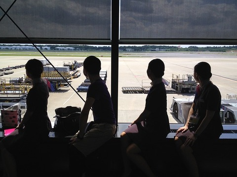 cabin-attendant-385448_640