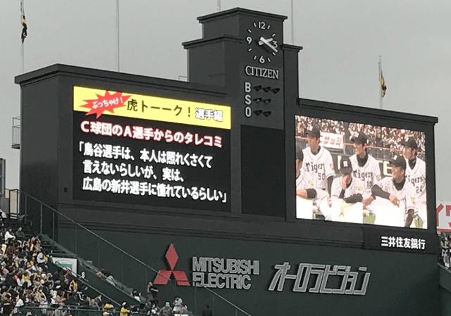 鳥谷_新井さん_尊敬_虎トーーク