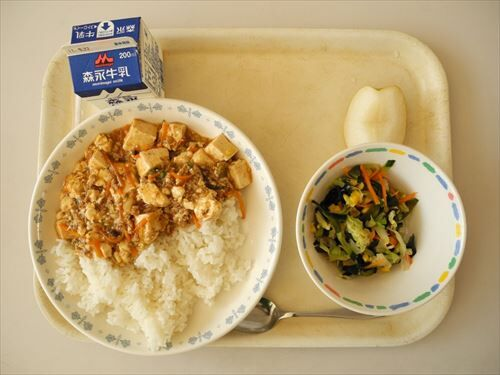 apanese_school_lunch_japan-428025_R