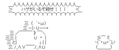 【ハゲに朗報】STU48石田千穂ちゃん「髪が無いツルツルの男性も好きです」
