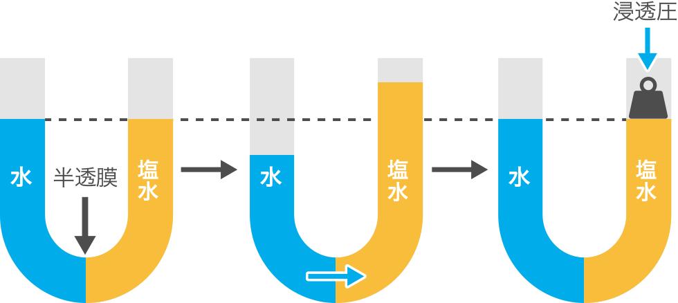 希薄溶液の現象(浸透圧、電解質...