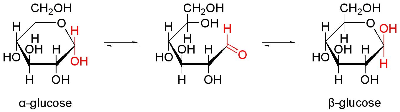 単糖 | Chemihack:おうちで学べる化学