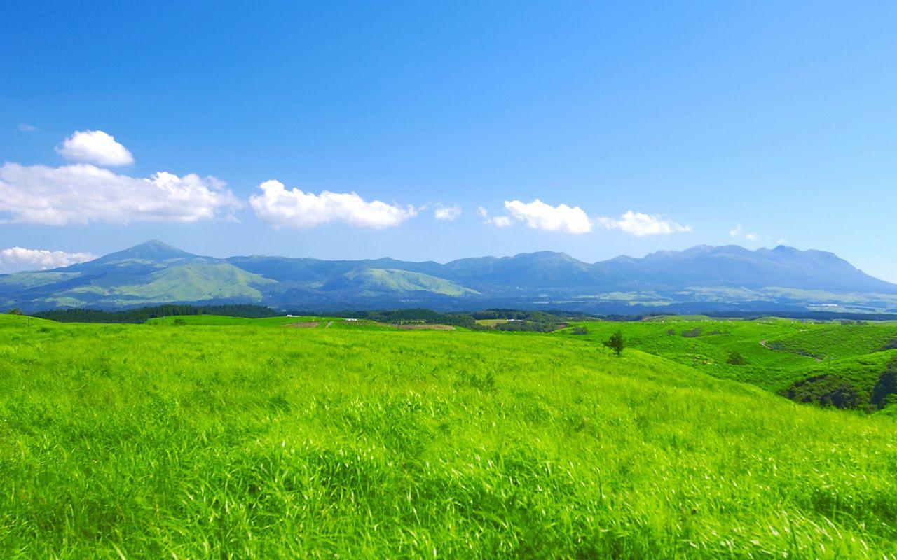 「草原」の画像検索結果