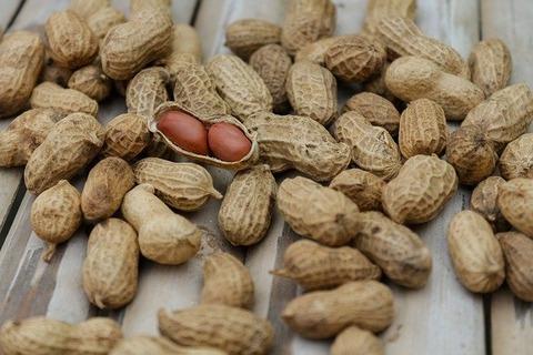 peanuts-1850809_640