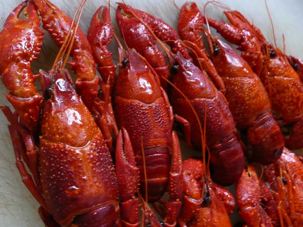 soba de sova : 食 渓流魚,川魚,鰻