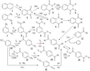 300px-説明図_フタル酸2