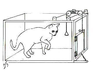問題箱の貓 : 「オッカムの剃刀」その言葉と意味 - NAVER まとめ