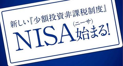 NISAの問題点